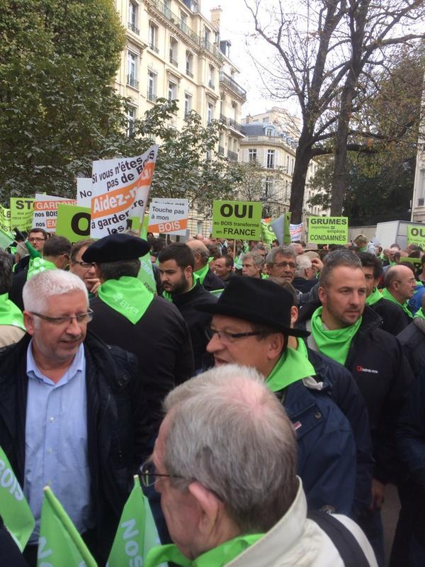 Avec les entreprises du bois des Deux-Sèvres pour que les ressources de nos forêts soient transfor..