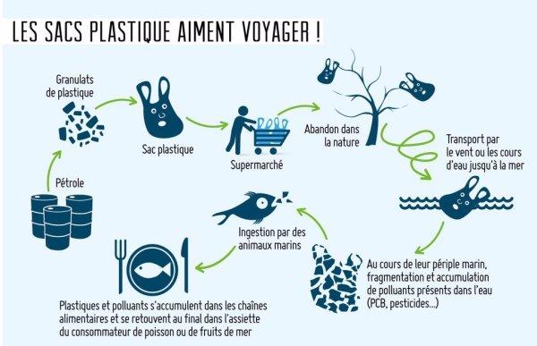 Plus de 260 espèces marines sont impactées par les #déchetsplastiques 🌍 #cop22 #ActOnClima..