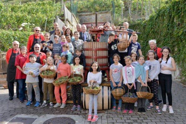 [En images] Vendanges hier au Chemin des Vignes d'@Issylesmoul avec les CM2 de l'école..
